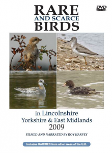 Rare and Scarce Birds in Lincolnshire, Yorkshire & East Midlands 2009 DVD